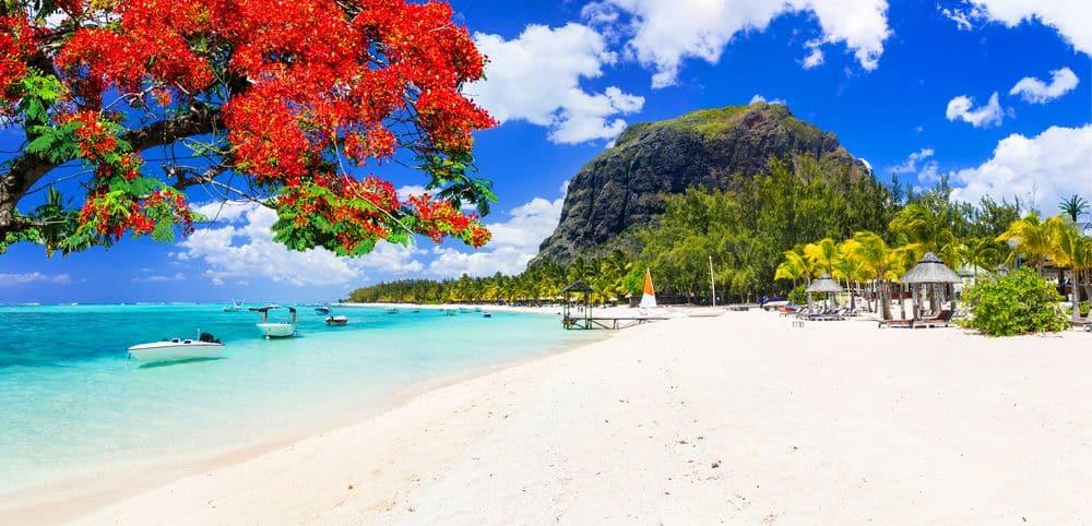 Quelle est la plus belle partie de l'île Maurice?