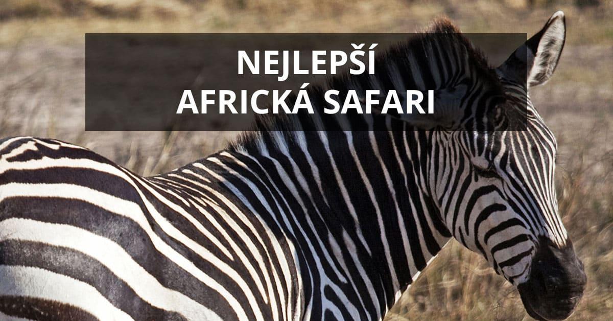 Quand est le meilleur moment pour faire un safari en Tanzanie?
