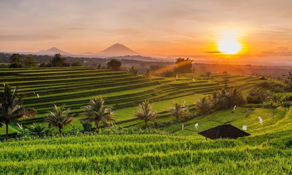 Comment puis-je me rendre en Indonésie?